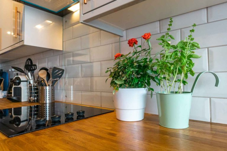λουλουδια στη κουζινα